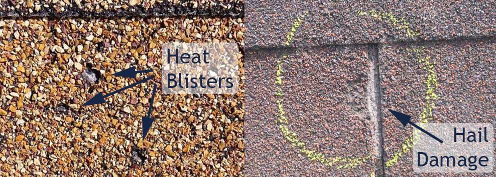 Differentiating Heat Blisters (Left) from Hail Damage (Right)
