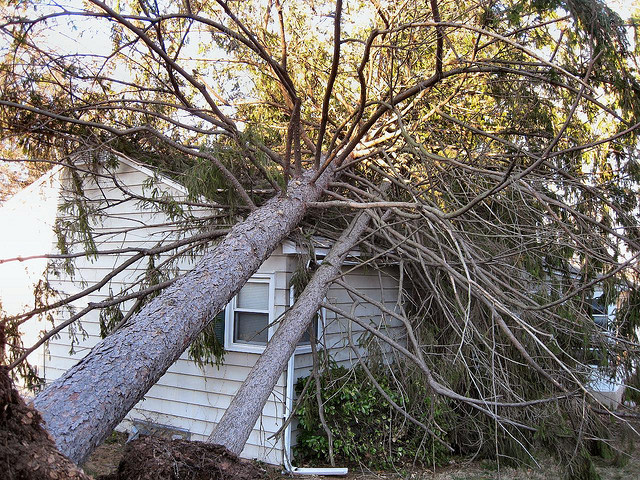 Storm Damage May Generate a Roofing Insurance Claim