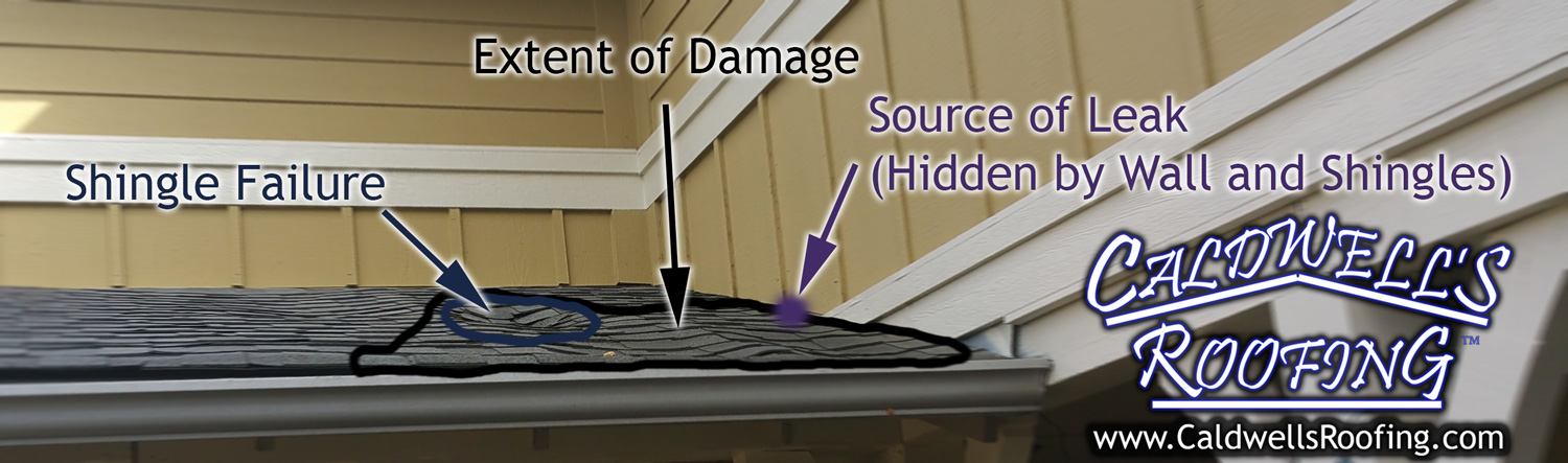 "The Importance of Professionalism in Roofing: A Hidden Leak Finally Becomes ""Visible"""