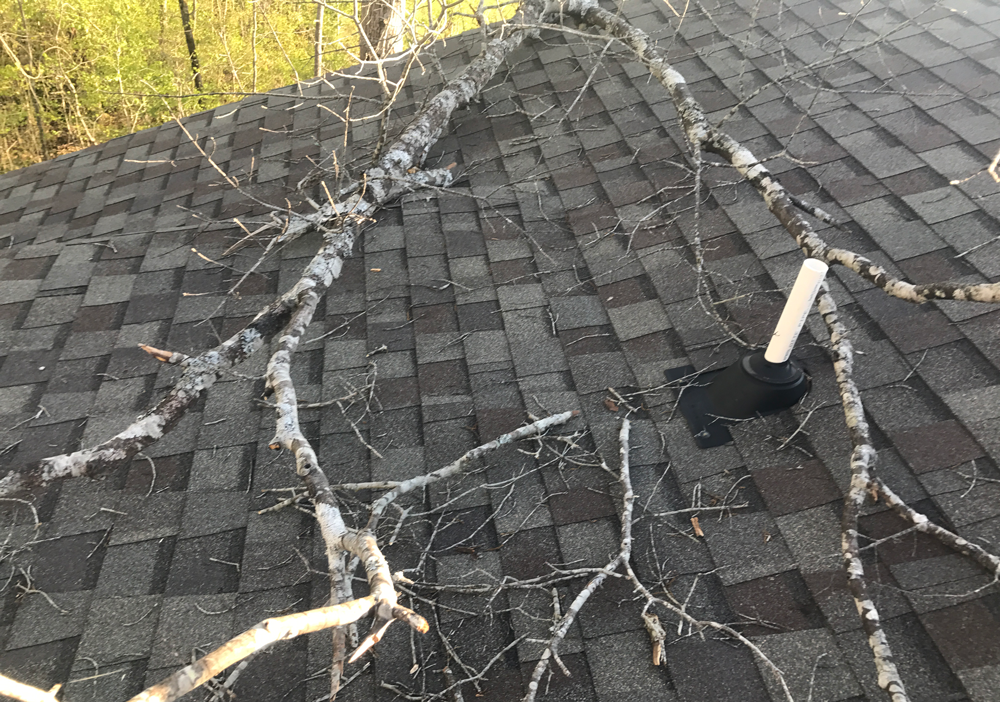Tree Branch Damage 2 Caldwell S Roofing